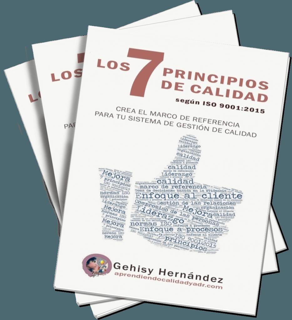 7 principios de calidad